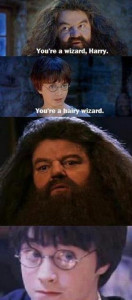 You're a Hairy Wizard